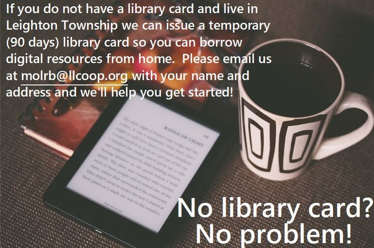 no library card.JPG